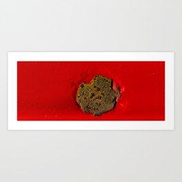 Rust on Red Art Print