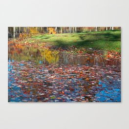 Look to Your Soul Canvas Print