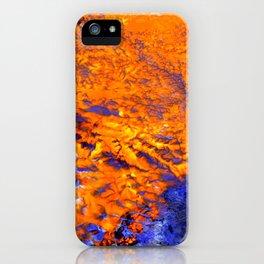 Ningaloo iPhone Case
