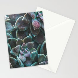 Botanical Gardens II - Succulents #321 Stationery Cards