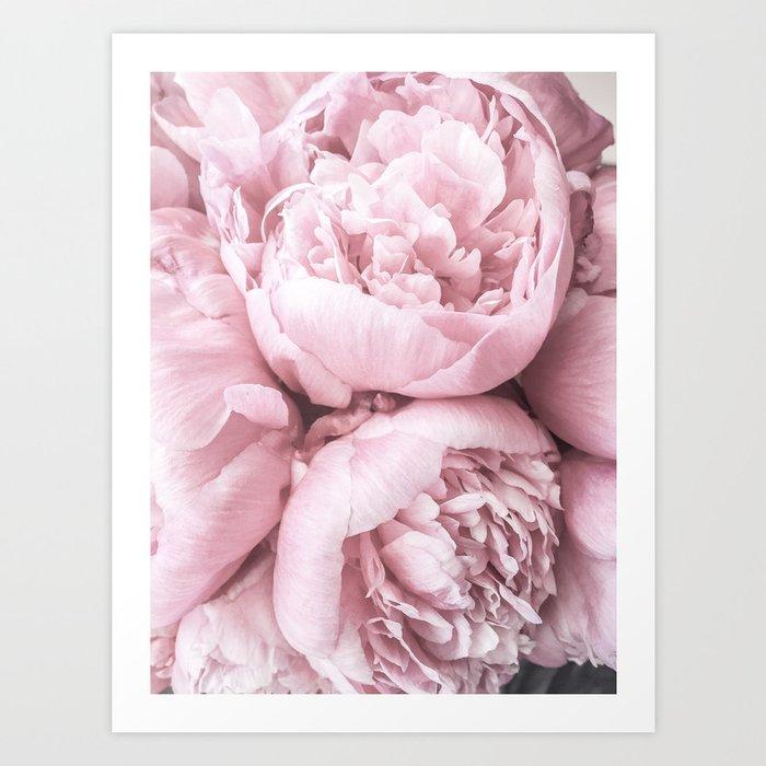 Lush Peony Flower Kunstdrucke