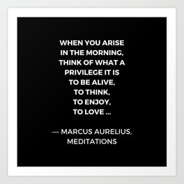 Stoic Wisdom Quotes - Marcus Aurelius Meditations - What a privilege it is to be alive Art Print