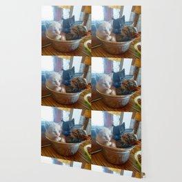 Three Kitties One Bowl Wallpaper