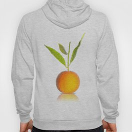 Orange in bubbles Hoody