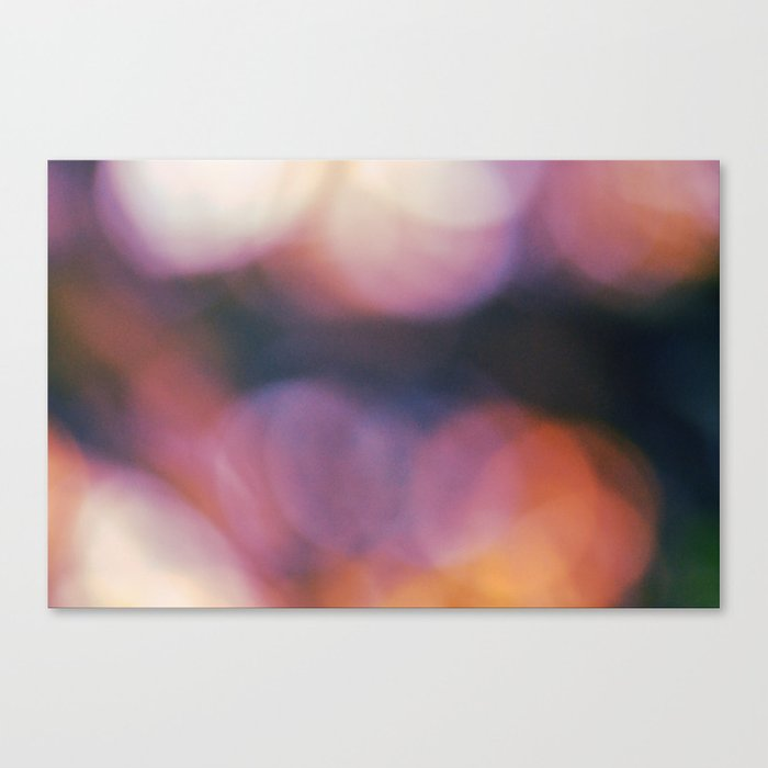#65 Canvas Print