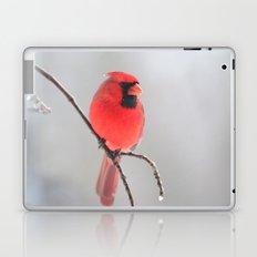 A Cardinal In A Snow Fall Laptop & iPad Skin