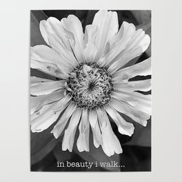 in beauty i walk... Poster