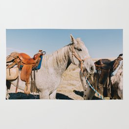 Desert Equestrian Rug