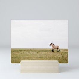 Belgian draft horse at Noordpolderzijl, Groningen, the Netherlands | Colorful Travel Photography Mini Art Print