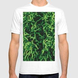 Botanical Gardens Evergreen #939 T-shirt