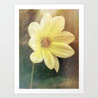 dahlia Art Prints featuring Dahlia by Lynn Bolt