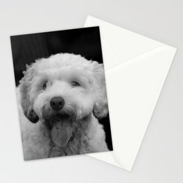 White fluffy labradoodle puppy dog with tongue hanging out Stationery Cards