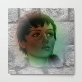 a picture on a wall Metal Print