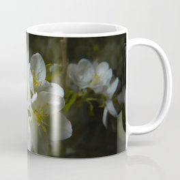 apple tree blossom 5 Coffee Mug