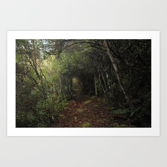 Veiled trail Art Print