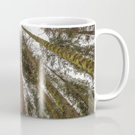 Sequoia Stretch - Nature Photography Coffee Mug