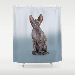 Drawing Sphynx kitten Shower Curtain