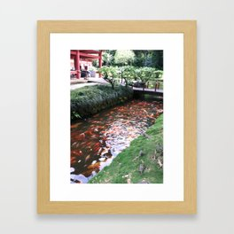Koi's - Valley of The Temple Kaneohe, Hawaii Framed Art Print