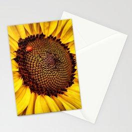 Sunflower and a Ladybug!!  Stationery Cards