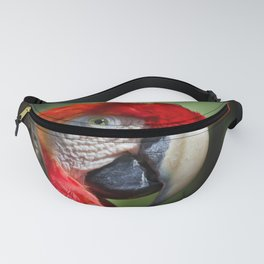 Scarlet Macaw Fanny Pack