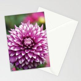 Morado Stationery Cards