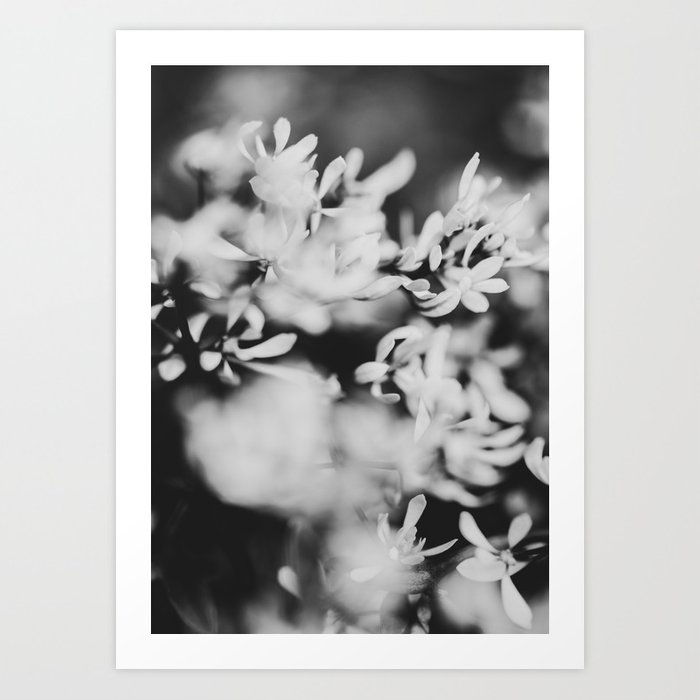 contrast Art Print