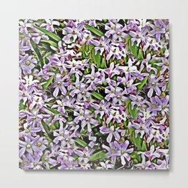 Purple Flowers Galore Metal Print