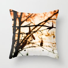 Late Autumn Chill Throw Pillow