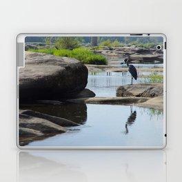 James River Park System- Blue Herons Laptop & iPad Skin