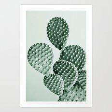Green Bunny Ears Cactus  Art Print
