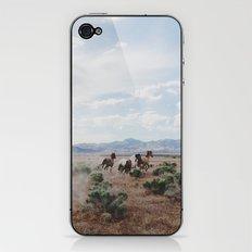 Running Horses iPhone & iPod Skin