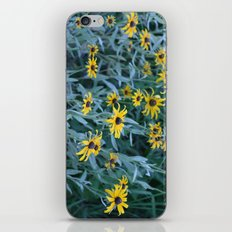 Flower Field iPhone & iPod Skin