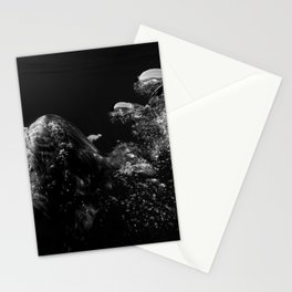 150803-0185 Stationery Cards