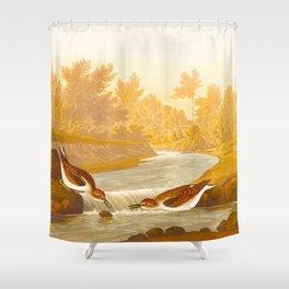 Little Sandpiper Bird Shower Curtain