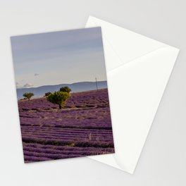 Lavender Fields In Provence South Of France Stationery Cards