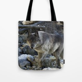 """Vision Quest""  Wild Grey Wolf Tote Bag"