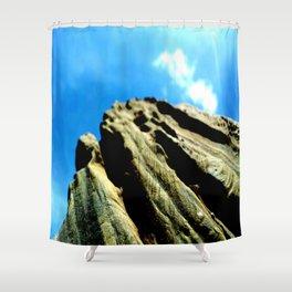 Vuelo de un pajaro Shower Curtain