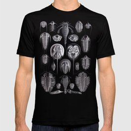 Trilobites and Fossils by Ernst Haeckel T-shirt
