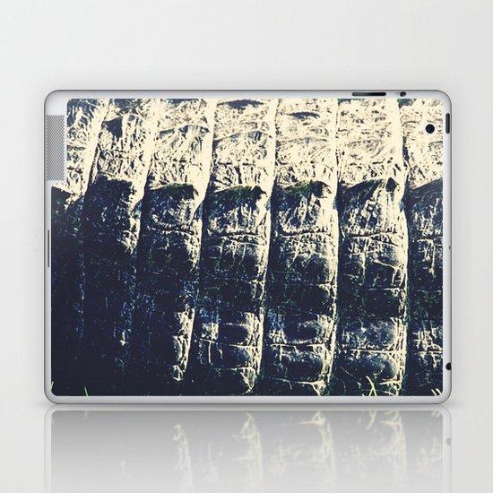 The Alligator Crawl Laptop & iPad Skin