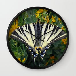 Scarce Swallowtail, Iphiclides Podalirius Wall Clock