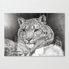 The Snow Leopard 2nd  Canvas Print
