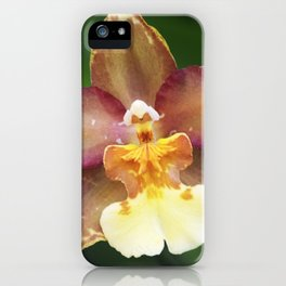 Longwood Gardens Orchid Extravaganza 73 iPhone Case