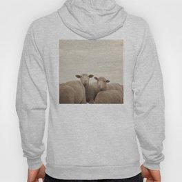 Smiling Sheep  Hoody
