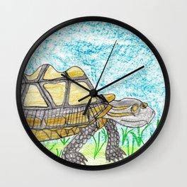 AldabraTortoise Wall Clock