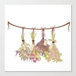Herbs in Pastel Colors . Canvas Print