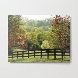 Beautiful Autumn/Day Scenery Metal Print