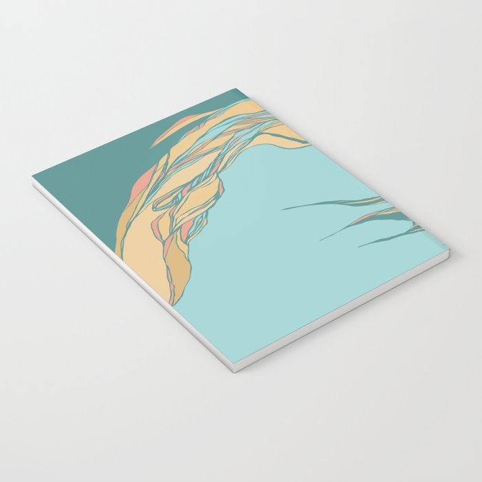 Abstraction Notebook