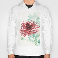 dahlia Hoodies featuring Bursting With Excitement  by Kate Havekost Fine Art