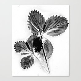 Strawberry Leaves Canvas Print