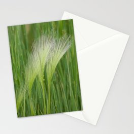 Fringes of Green Stationery Cards